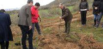 Успешна акцијата Ден на дрвото во Свети Николе.
