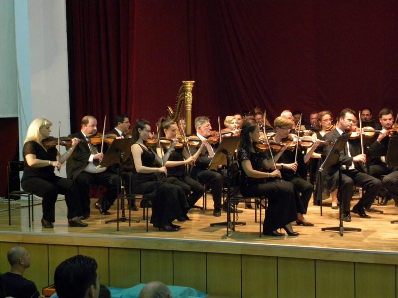 filharmonija (8)