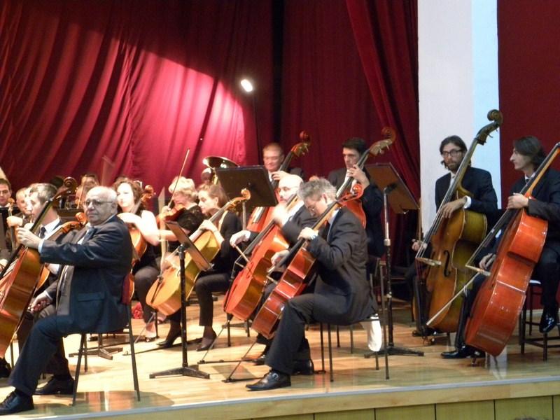filharmonija (9)
