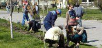 Успешно реализирана акцијата Македонија земја на розите